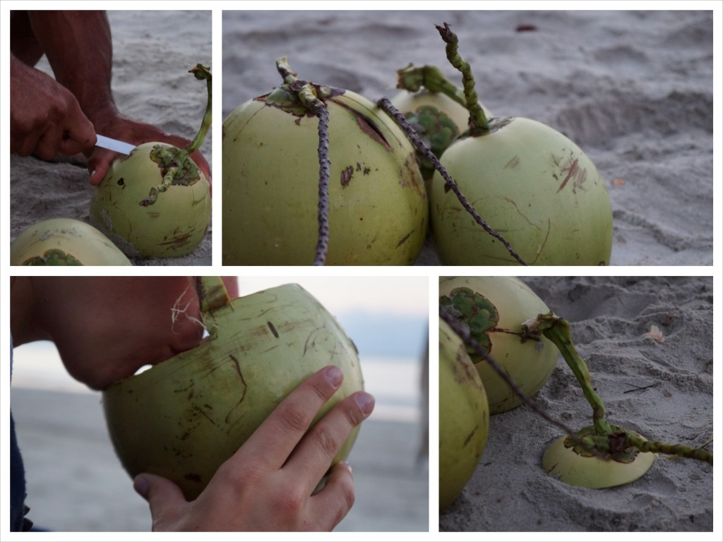 coconut_2