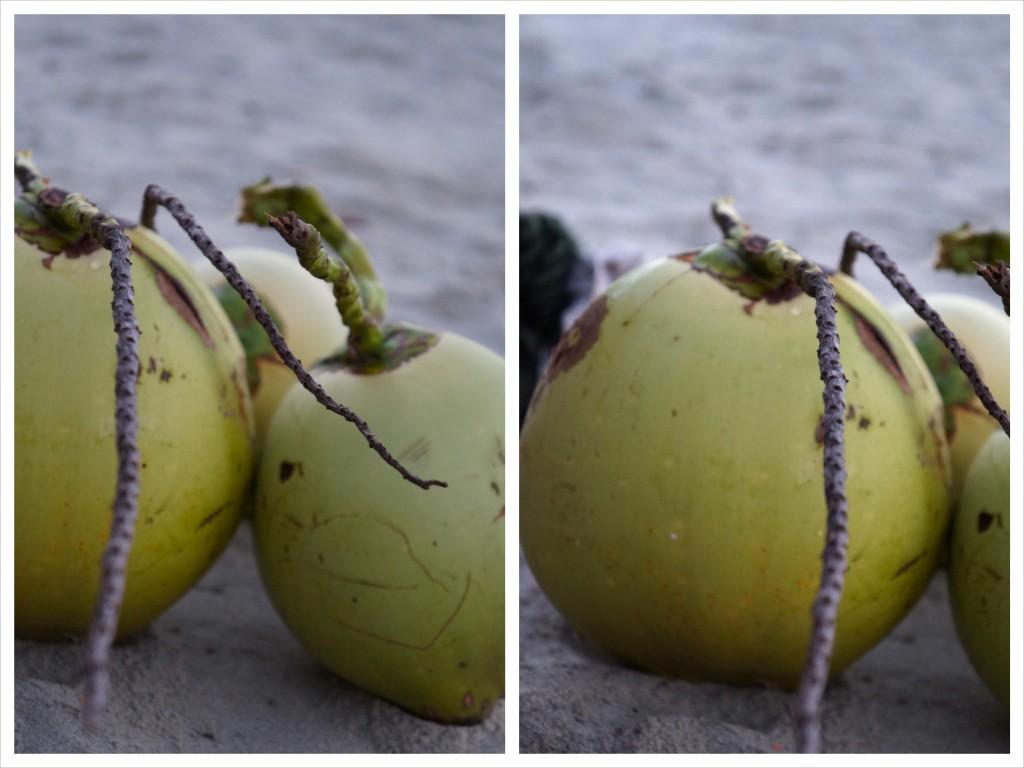 coconut_4
