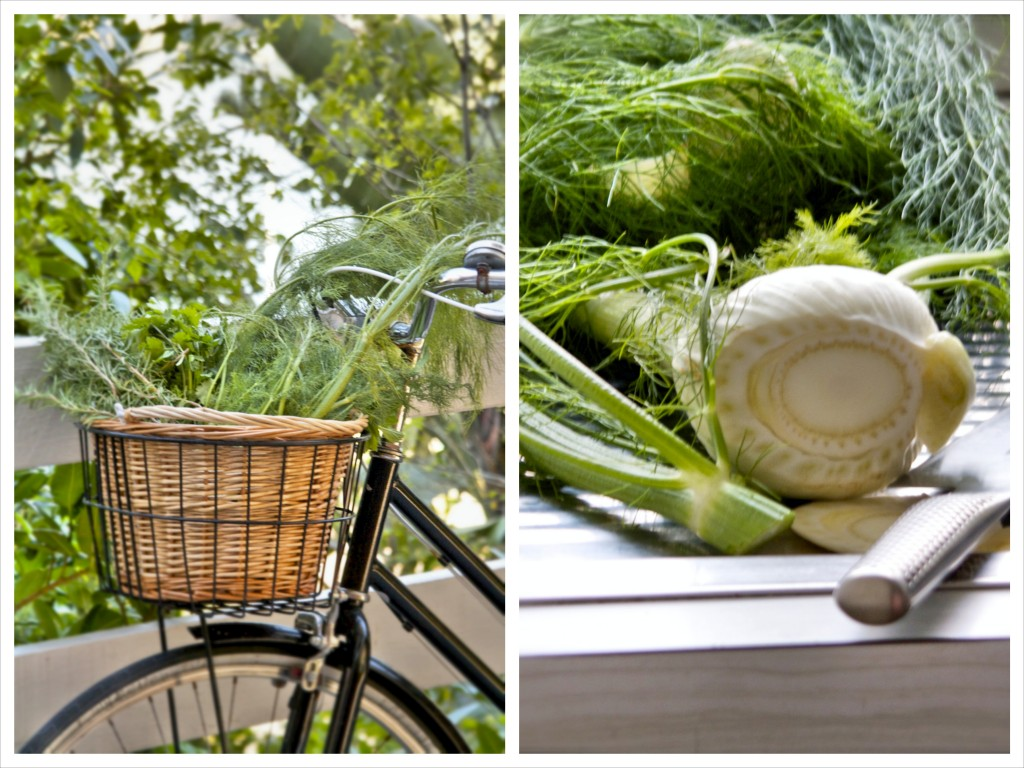 fennel_bycicle_collage
